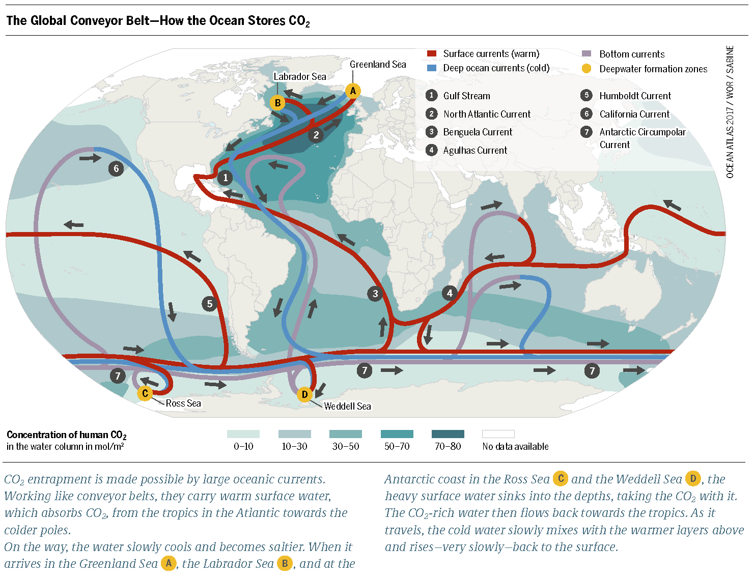 How the ocean slows climate change meeresatlas download graphic pdf gumiabroncs Image collections